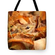 Chipmunk Among The Leaves Tote Bag