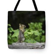 Chipmunk In South Lake Tahoe  Tote Bag