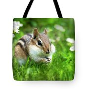 Chipmunk Saving Seeds Tote Bag