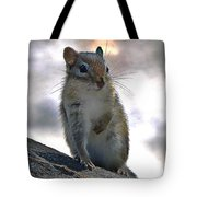 Chipmunk Up Close Tote Bag