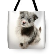 Chipoo Puppy Tote Bag