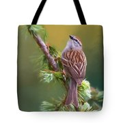 Chipper Looking Up Tote Bag