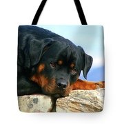 Chiron The Rottweiler  Tote Bag
