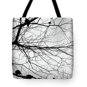 Chirping Hidden Messages  Tote Bag