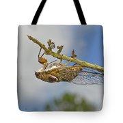 Chirrup Chirrup Tote Bag