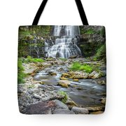 Chittenango Falls In Autumn  Tote Bag