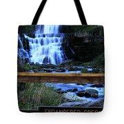 Chittenango Falls State Park Tote Bag