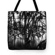 Chokoloskee Mangroves Tote Bag