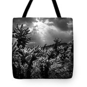 Cholla Cactus Garden Bathed In Sunlight In Black And White Tote Bag