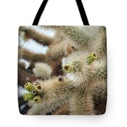Cholla Cactus Garden Closeup Tote Bag