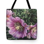 Cholla Flowers Tote Bag
