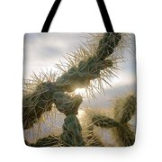 Cholla, Organ Pipe National Monument, Az  January 2015 Tote Bag