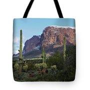 Cholla  Saguaro Superstition Mountain Tote Bag