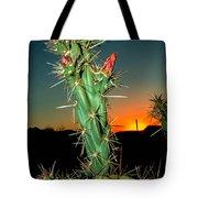 Cholla Sunrise Tote Bag
