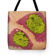 Chondrocytes, Tem Tote Bag