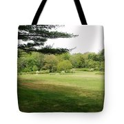 Christ And Nature  Tote Bag