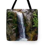 Christine Falls Mt Rainier Tote Bag