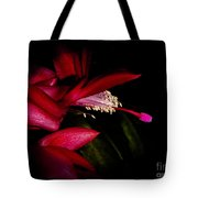 Christmas Beauty Tote Bag