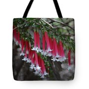 Christmas Bells 1 - Australian Native Fuchsia Tote Bag
