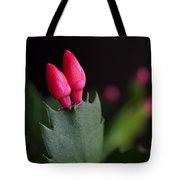 Christmas Cactus Double Joy Tote Bag by Rona Black