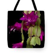 Christmas Cactus Purple Flower Blooms Tote Bag
