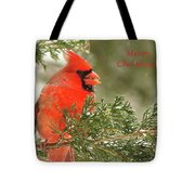 Christmas Cardinal  Tote Bag by Lori Frisch