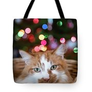 Christmas Kitty In A Basket Tote Bag