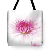 Chrysanthemum #003 Tote Bag