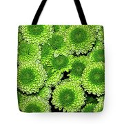 Chrysanthemum Green Button Pompon Kermit Tote Bag