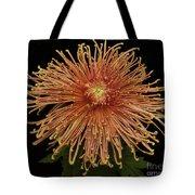 Chrysanthemum 'senkyo Kenshin' Tote Bag