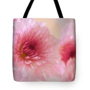 Chrysanthemums #011 Tote Bag