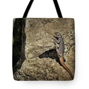 Chuckwalla - Crevice Tote Bag