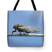Cicada On The Line Tote Bag