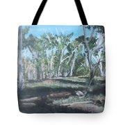 Cimmeron Grasslands Tote Bag