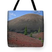 Cinder Cone And Painted Sands Tote Bag