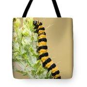 Cinnabar Moth Caterpillar Tote Bag