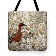 Cinnamon Teal Tote Bag