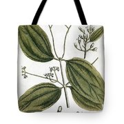 Cinnamon Tree, 1735 Tote Bag