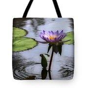 Circle Of Beauty Tote Bag by Sabrina L Ryan