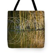 Circle Of Fall In Yellowstone Tote Bag