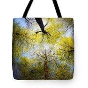 Circle Of Trees Tote Bag
