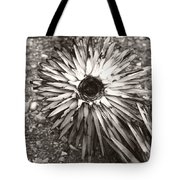Circle Top Of Joshua Tree Tote Bag
