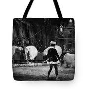 Circus: Polar Bears Tote Bag