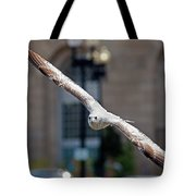 City Gull Tote Bag
