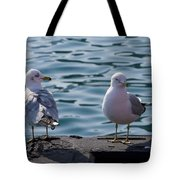 City Gulls Tote Bag