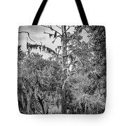 City Park Lagoon - Bw Tote Bag
