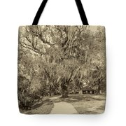 City Park New Orleans - Sepia Tote Bag