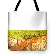 Cityscape With Wood Tote Bag