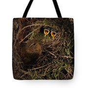 Clamorous Chicks Tote Bag