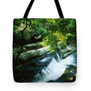 Clare Glens, Co Clare, Ireland Tote Bag by The Irish Image Collection